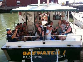 Baywatch Dolphin Tours The Home Of Affordable Family Fun